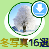 LINEホーム画面を冬のイメージに変更できるおすすめ写真16選