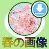 LINEホーム画面を春のイメージに変更できるおすすめ画像15選